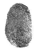 Forensic Science (Fridays 9:00 - 11:00 AM)
